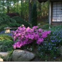 natural-stones-sculptures-sculpture-garden-in-nc