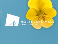 north-lake-mall-under-21-north-carolina