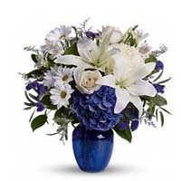 starclaire-house-of-flowers-florists-nc