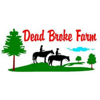 Dead Broke Farm Horseback Riding in NC