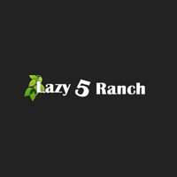Lazy 5 Ranch Day Trips for Kids in NC