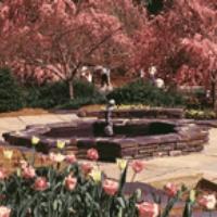 sarah-p-dukes-gardens-nc-garden-and-arboretum