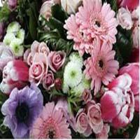 north-raleigh-florist-florists-nc